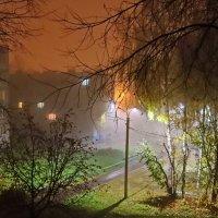 Ночной туман октября. :: Михаил Николаев