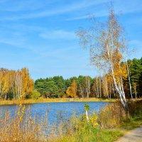 Озерное... :: Miola