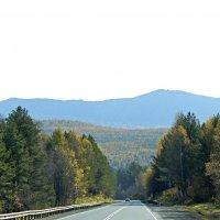 Осенняя дорога :: Зинаида Каширина