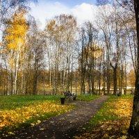 Осенние аллеи. :: Владимир Буравкин