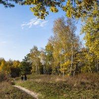 Осенний пейзаж :: Александр Крупский