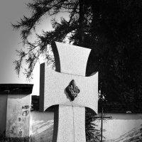 Памятник пластунам. :: Андрий Майковский