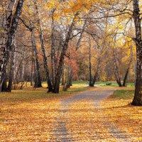 Осень в парке :: IRinA***