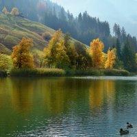 осень на Черном озере :: Elena Wymann