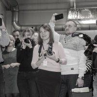 Комплимент от фотографа :: оксана савина