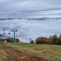 Карпаты октябрь 2019. высота 1600м. :: igor G.