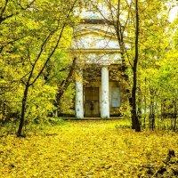 Москва. Парк Кузьминки. :: Ирина