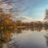 На реке Цне ........... :: Александр Селезнев
