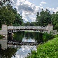 Олений мост :: Андрей Щетинин