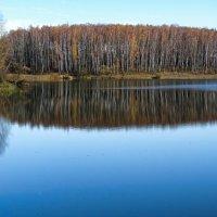 Отражение осени в озере :: Милешкин Владимир Алексеевич