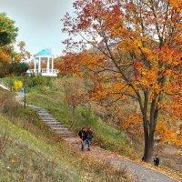 Осень в Орле * :: Александр