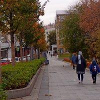 Осенняя аллея :: Alexander Borisovsky