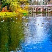 Москва. Парк Лефортово. :: Ирина