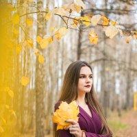 Осень :: Оля Шейко