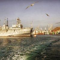 Южная бухта. :: Анна Пугач