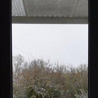 снег :: Павел Самарович