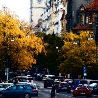 Осень 6 :: Елена Куприянова
