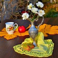 В опустевшем осеннем саду :: Miola