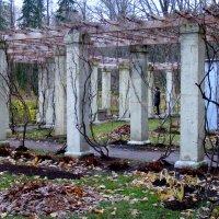 Осенний лабиринт. :: Татьяна