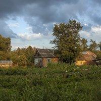 Хорошо в деревне летом Август 2017 :: Юрий Клишин