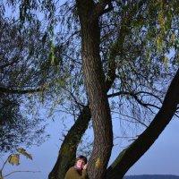 Осенние прогулки 3 :: донченко александр