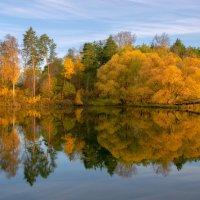 Осень в Окунево. :: Александр Архипкин