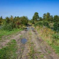 прогулка  к озерам :: Дарья Молчанова