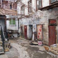 Старый дворик :: Alex Chernavski