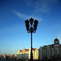 Уличный фонарь. :: Liudmila LLF