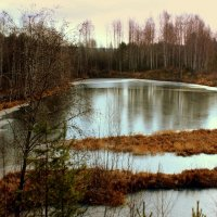 Первый лёд на реке... :: Нэля Лысенко