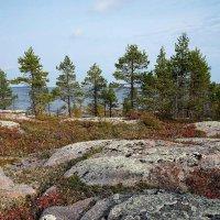 Осенний пейзаж :: Сергей Курников