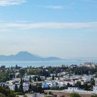 Тунис. Вид на город Кортаж и город Тунис с холма Бирса. :: Лариса (Phinikia) Двойникова