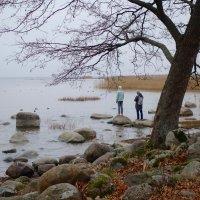 осенью в Александрии :: Елена