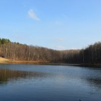 Лесное Озеро. :: Алексей