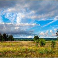 Пейзаж :: Валентин Кузьмин