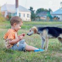 Первое знакомство. :: Юлия Масликова