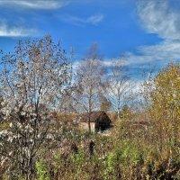 Осень в Филисове :: Валерий Талашов