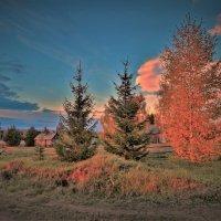 Осенний день догорает :: Валерий Талашов