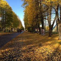 осень :: NIKOLAY Nagaev