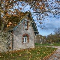 Кальви Эстония :: Priv Arter