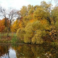 Осень на Смоленщине (из поездок по области) :: Милешкин Владимир Алексеевич