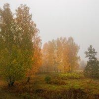 Осеннее утро на краю деревни :: Ольга Соколова