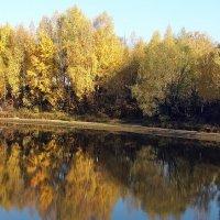 """""""Унылая пора""""-не про такую осень, на реке Ить :: Николай Белавин"""