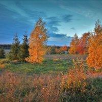 Деревня Горка :: Валерий Талашов