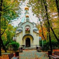Москва. Новодевичий монастырь. :: Ирина