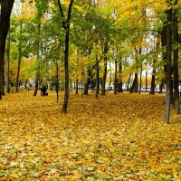 Осенний сад. :: Милешкин Владимир Алексеевич