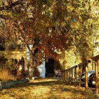 Осенний дворик. :: ЛЮБОВЬ ВИТТ