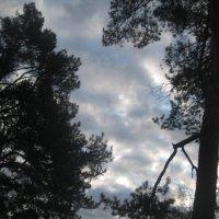 Небо :: Maikl Smit