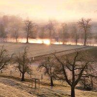 мороз и солнце, и туман :: Elena Wymann