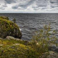 Осень, прибой :: Андрей Бобин